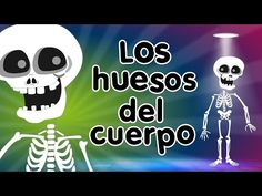 Los Huesos del Cuerpo - Canciones Infantiles - YouTube Spanish Teacher, Spanish Class, Teaching Spanish, Music For Kids, Kids Songs, Elementary Spanish, Elementary Schools, Halloween Songs, Spanish Songs