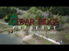 Volunteer at Cedar Ridge Preserve Today! Texas Roadtrip, In The Heart, Free Time, Girl Scouts, Preserves, Light In The Dark, Dallas, Road Trip, Places To Visit
