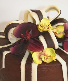 Spiced Chocolate Torte Wrapped in Chocolate Ribbons