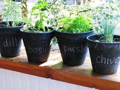 paint terra cotta pots with chalkboard paint to label seeds