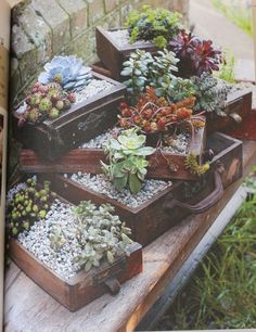 Or plant some succulents in old drawers? Be still my heart. I really love this idea. The mix of weathered wood, stones and the wonderful texture of succulents speaks to me. I have some old sewing machine drawers that would be perfect for this project.