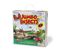 Learning Resources Jumbo Insects, 7-Insects Learning Reso... https://www.amazon.com/dp/B0012OELLW/ref=cm_sw_r_pi_dp_x_dNqeAb82RB3MX