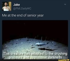 26 lol Hilarious High School Memes - Quotes and Humor Funny Shit, Funny Posts, The Funny, Funny Stuff, Funny Things, Random Stuff, Memes Humor, Haha, Doja Cat