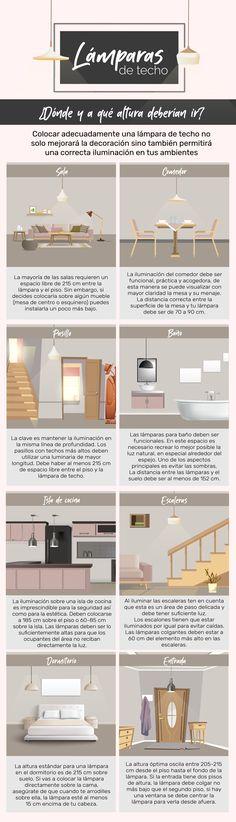 Infografia Lamparas De Techo