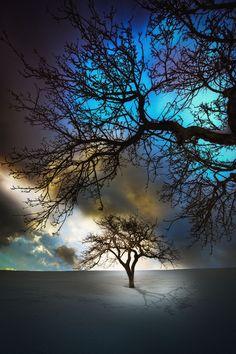 ponderation:  hibernation by Stefan Thaler / night skies