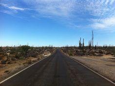 Punta abreojos road