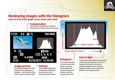 Reviewing images with your camera's histogram: free photography cheat sheet