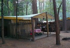 """Our """"summer home"""". Curry Village Housekeeping Camp. Yosemite National Park. We camped there every summer with a whole bunch of friends from our neighborhood. Good times."""