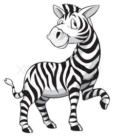 Best Baby Zebra Vector Illustration Free Cartoon Draw
