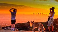 Nothing But the Dog in Me: Pet-Friendly Los Angeles | Discover Los Angeles