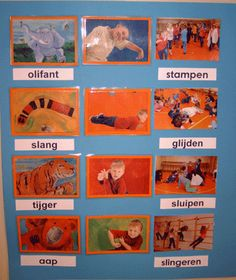 Beweging: les over dieren (thema papegaai) Teacher Inspiration, Jungle Safari, Dance Studio, Animal Crafts, School, Drama, Sport, Projects, Kids