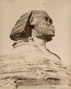 The Great Sphinx of Giza. Photographed by the Zangaki brothers, c. to Image: Śląska Biblioteka Cyfrowa via Europeana Ancient Art, Ancient Egypt, Ancient History, History Of Wine, Black History Books, Greek Brothers, Le Sphinx, Photo Record, Rare Historical Photos