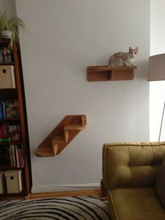 Attrayant OMG My Cats Would Lovee This :) Haha Awesome Cat Shelfs Diy Cat Tower,