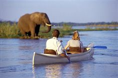 Canoeing Safari in the zambezi River in southern Africa - something I never realized I wanted to do until I saw this pin