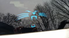 Carolina Panthers cat car window sticker decal by GTGraphicsGifts