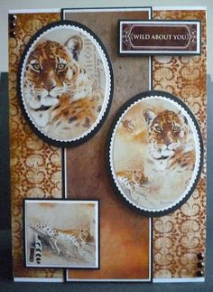 Another card made using the World Wildlife III Collection
