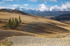 Mountains and steppe by Alexander Nerozya (Altay or Altai, Siberia, Russia)