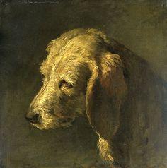 Hondenkop Rijksmuseum