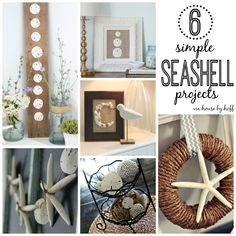 six simple seashell projects via housebyhoff.com