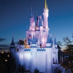 Continental United States | Why Disney Isn't Just for Kids