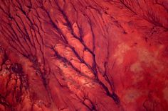 33 Stunning Photos Of Our Amazing Planet Earth Taken By A Guy In Space - BuzzFeed Mobile