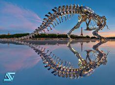 Life-size Chrome T-Rex in Paris Promotes Contemporary Art