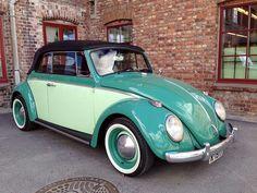 Vw Beetle Convertible, Two Tone Paint, Car Painting, Vw Beetles, Volkswagen, Van, Vw Bugs, Green, Vroom Vroom