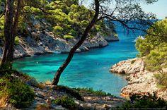 Une mer bleu turquoise - Calanque de Port Pin - [Littoral de Provence, entre Cassis et Marseille :  Le Parc National des Calanques]