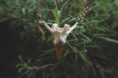 Collana con vertebra di coniglio e cristallo di di CrystalBonesArt