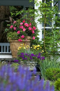 Thrilling About Container Gardening Ideas. Amazing All About Container Gardening Ideas. Garden Design, Container Herb Garden, Plants, Pallet Projects Garden, Garden Pictures, Garden Images, Container Gardening, Pretty Gardens, Container Gardening Vegetables