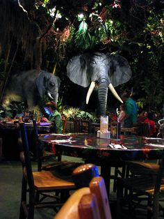 Rainforest Cafe - ate here on a trip to Dallas back in 2004 - it was so awesome!