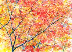 Fall Blossoms by The Watercolor Guy, via Flickr