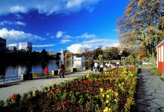 Stavanger Norway, My Favorite Image, Beautiful Images, Dolores Park, Places, Travel, Google Search, Viajes, Destinations