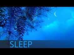 8 Hour Sleep Music For Insomnia: Deep Sleep Music, Sleeping Music, Help Insomnia ☯207 - YouTube