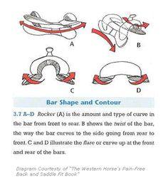 Anatomy of the english saddle horse info pinterest saddles and saddle tree ccuart Choice Image