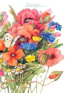 *Marjolein Bastin! Botanical Art, Botanical Illustration, Watercolor Flowers, Watercolor Paintings, Watercolors, Marjolein Bastin, Nature Sketch, Nature Artists, Dutch Artists