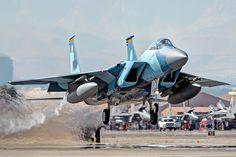 McDonnell Douglas F-15 Eagle - Aggressor
