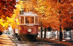 Top 20 Places Where Autumn Is Incredibly Beautiful - Tram on the Prague street, Czech Republic Autumn Wallpaper Hd, Autumn Tumblr, Tumblr Wallpaper, Hd Wallpaper, Wallpapers, Autumn Inspiration, Czech Republic, Around The Worlds, In This Moment