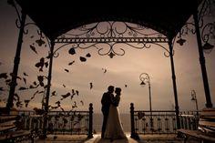 Destination Wedding Photographer Marian Sterea Wedding Photography Inspiration, Autumn Wedding, Destination Wedding Photographer, Botanical Gardens, Family Travel, Singapore, Wedding Reception, Creative, Photos