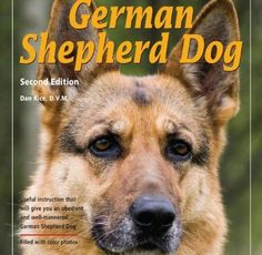 http://germanshepherdlife.com/ | German Shepherd Dog care and Breed information. - germanshepherdlife.com offers all the information you need about German Shepherds. How to take care of this wonderful dog breed. You'll find dog food and health information and also information on training your German Shepherd and all kinds of fun activities.