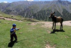 An ethnic Uighur child pulls a donkey near Mount Tianshan in Aksu, Xinjiang Uighur Autonomous Region