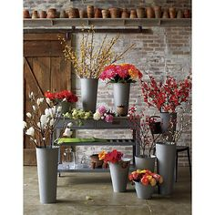 Galvanized Buckets | Crate and Barrel