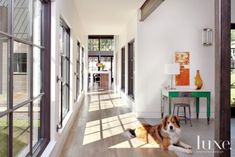 Modern White Naturally-Lit Hallway
