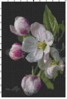 Cross Stitch Pattern Apple Blossoms Flower Cross Stitch Design Chart PDF Digital File Instant Download by theelegantstitchery on Etsy