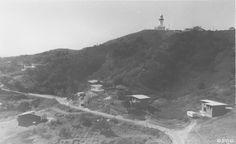 Wategos Beach and Cape Byron. C.1960's.