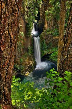 Toketee Falls, Douglass County, Oregon