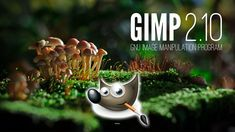 CURSO DE GIMP - COMPLETO - YouTube Software, Christmas Ornaments, Holiday Decor, Youtube, Image, Color Correction, Color Temperature, Drawing Lessons, Barbell