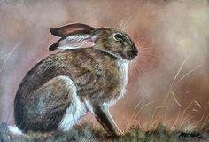 Hare original painting by wildlife artist H Clark white hare ORIGINAL PAINTING