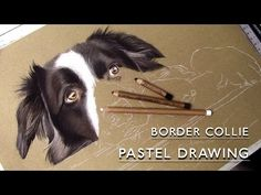how to paint a border collie Portrait Paintings, Dog Portraits, Animal Paintings, Creature Drawings, Animal Drawings, Pencil Drawings, Pastel Drawing, Pastel Art, Speed Art