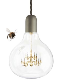 The Turducken of Lighting? : King Edison Lamp - A Chandelier Inside A Light Bulb!